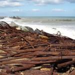 Corrosion Erosion: The erosion prevention is coroding