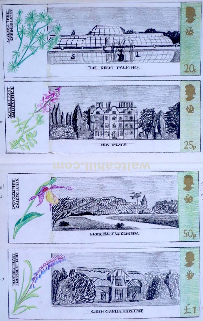 Drawings for Kew Gardens Stamp Designs