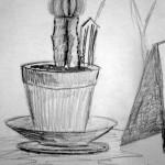 Cactus. 19881112
