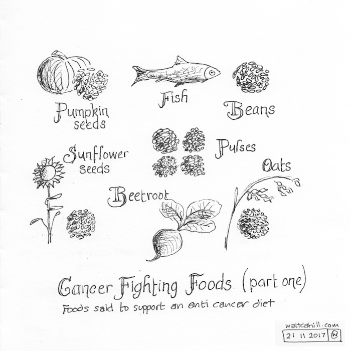 Cancer Fighting Foods (part one)