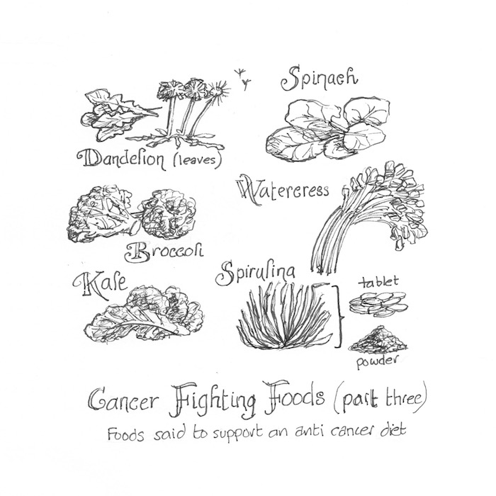 Cancer Fighting Foods (part three)